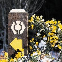 A West Highland way marker