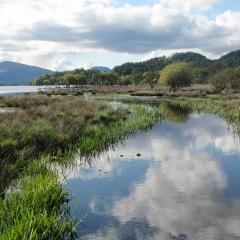 Waterside views from  Loch Lomond Waterfront