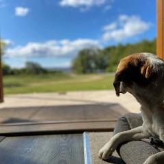 Dog-Friendly-Holidays-7