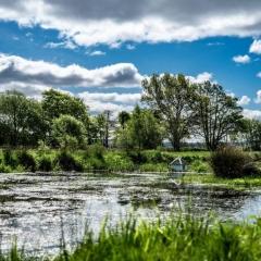 LLWF-Pond-e1596194789114