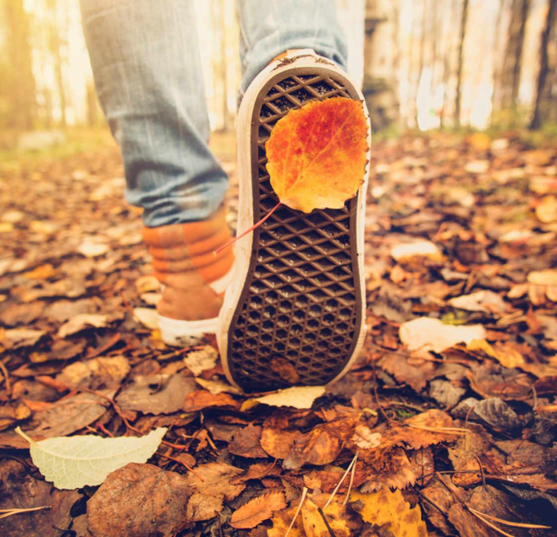 Autumn Leaf on shoe