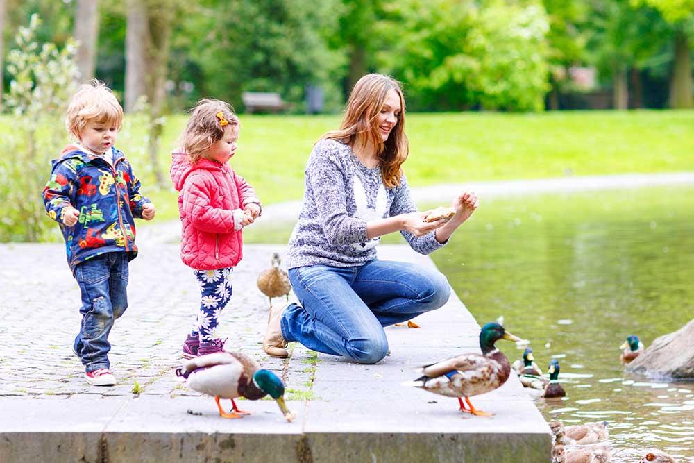 A mother feeding sucks with children